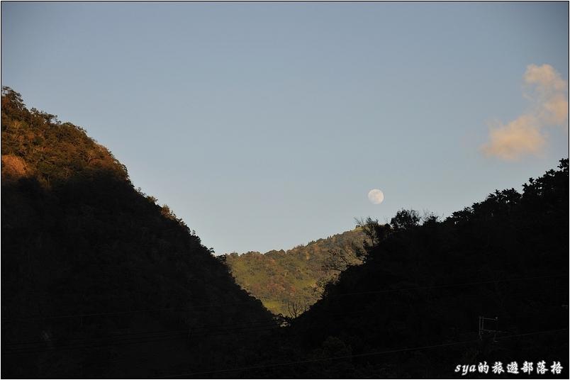傍晚,月亮已經等不及的跳出山頭。