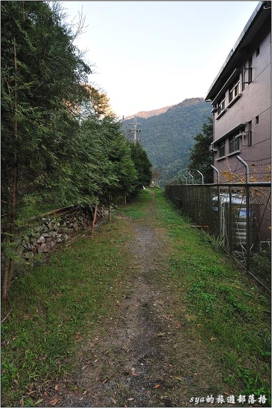 繞過台電的辦公室後,做方左側的岔路可以通往壩頂俯瞰武界水庫。